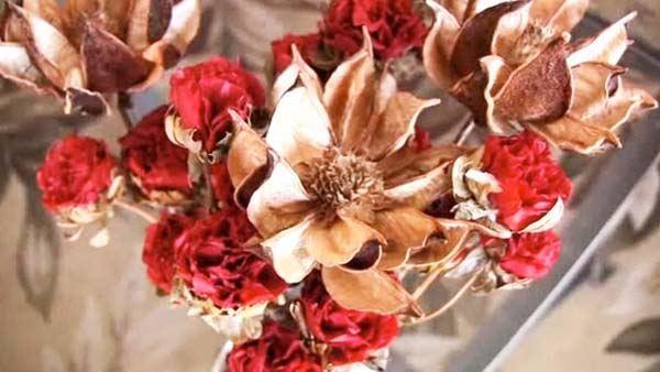 como-hacer-un-cuadro-de-flores-secas