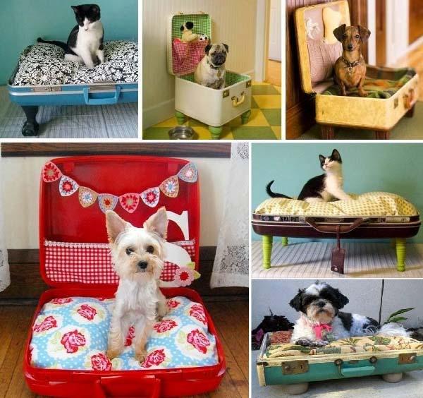 cama-hecha-con-maletas-para-nuestra-mascota